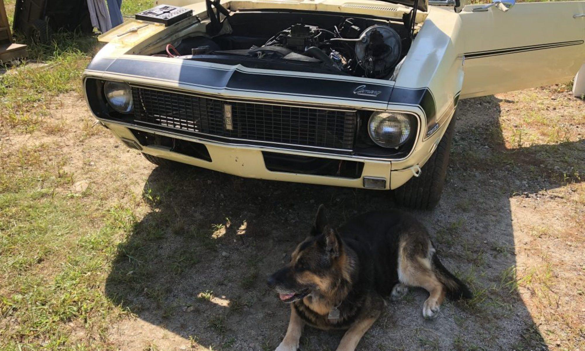 Pat's Car Blog